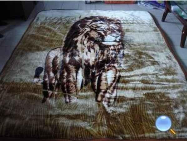 河北毛毯订制生产