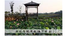 武汉梁子湖新华农业开发有限公司