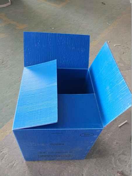 广州钙塑箱供应商