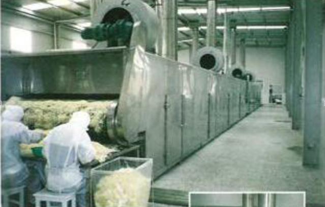 网带式脱水蔬菜干燥机