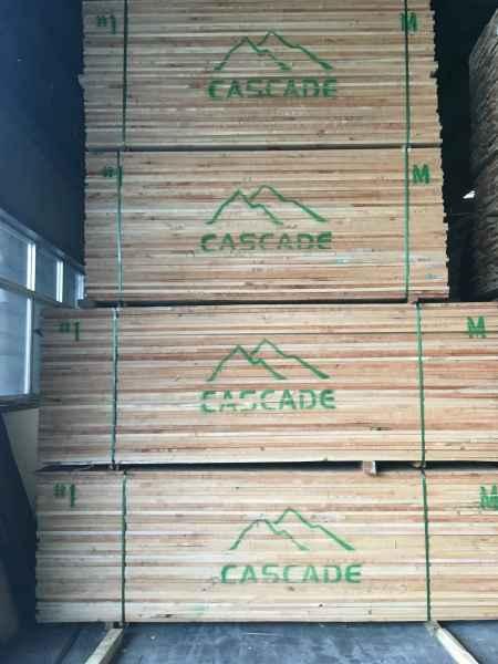 北美太平洋枫木实木板材