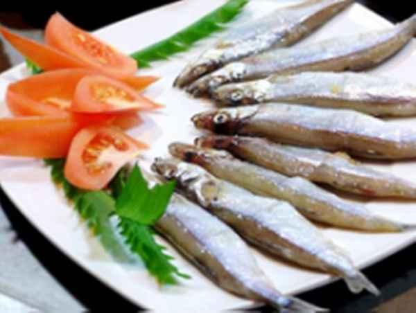 多春鱼销售批发