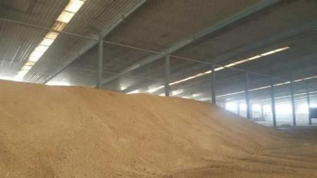 壳聚糖生产厂家