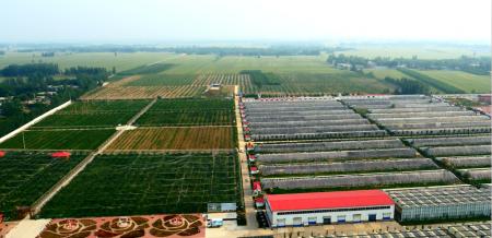 富硒农产品种植基地