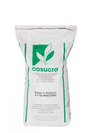 比利时cosucra菊苣菊粉