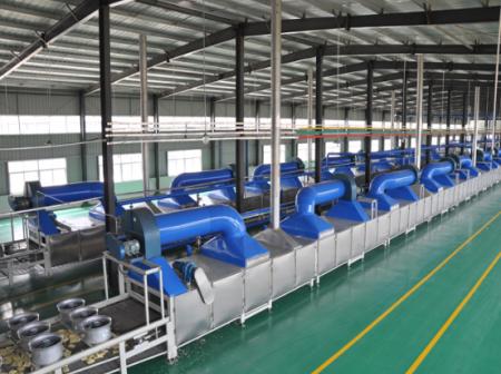 挂面机生产线设备/挂面机生产线设备厂家