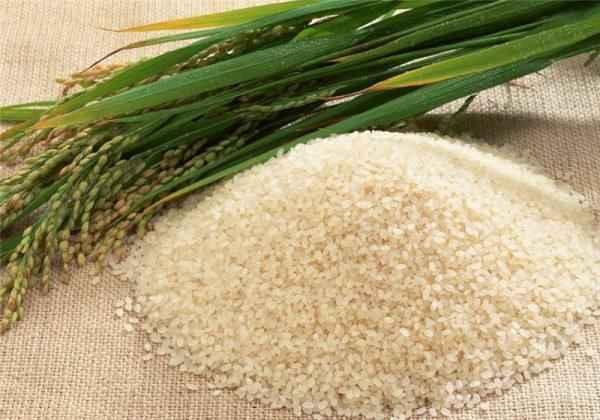 天然无公害大米