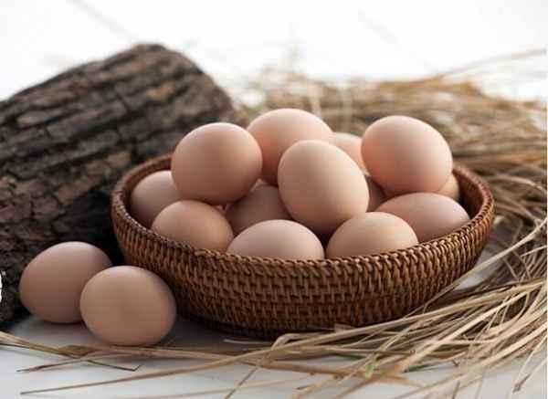 生态散养草鸡蛋