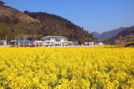 宜昌圣天庄园乡村度假旅游