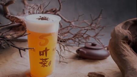 台湾五叶茶网