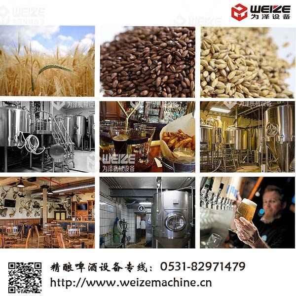 原浆啤酒设备精酿啤酒设备酿造工艺