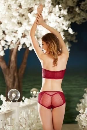 品牌蕾丝内裤