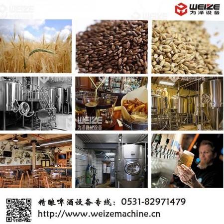 原浆啤酒设备6只发酵罐