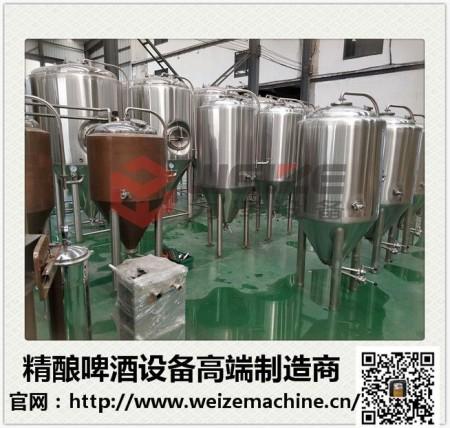 日产300升精酿啤酒设备
