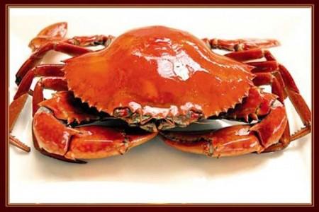 秦皇島海鮮自助餐哪家好