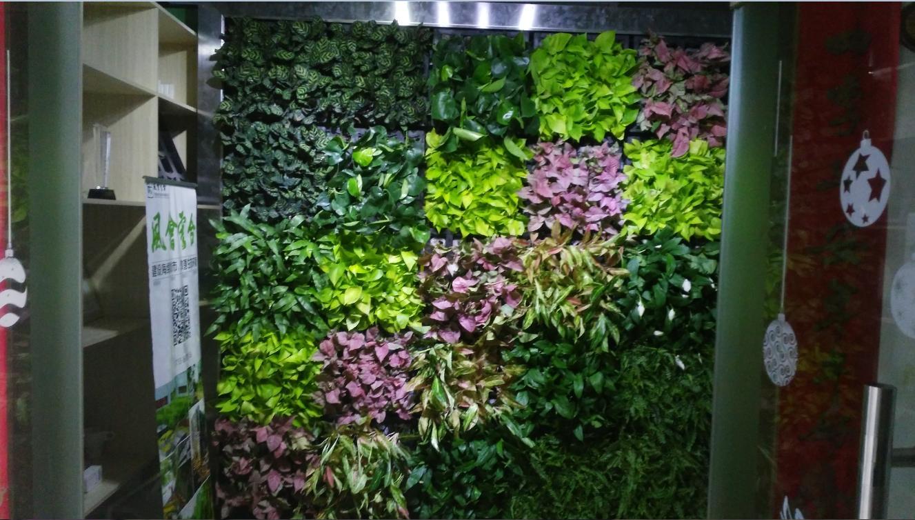 铺贴式垂直绿化厂家