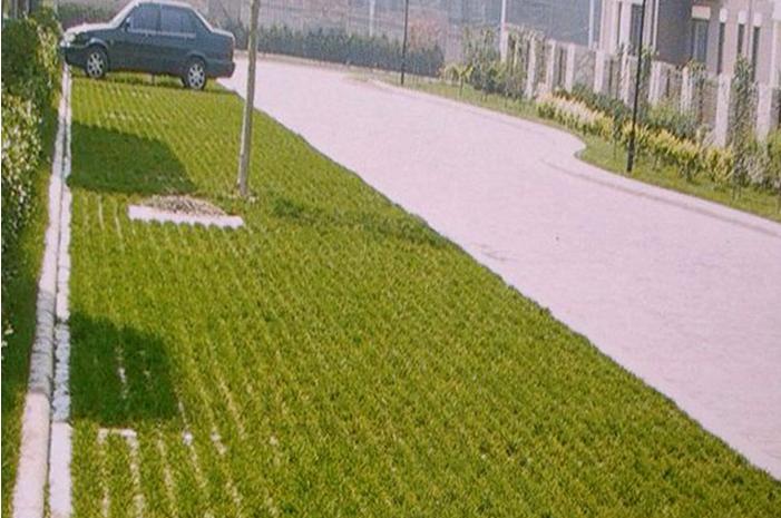 威海植草停车位地坪厂家价格