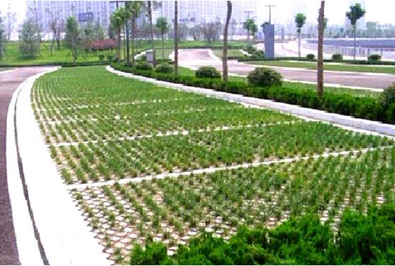 威海植草停车位地坪哪个好图片