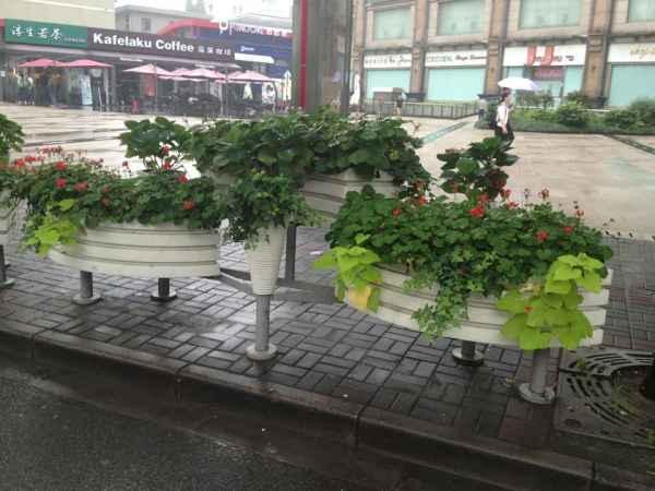 嘉兴泰东园林景观花箱制造商