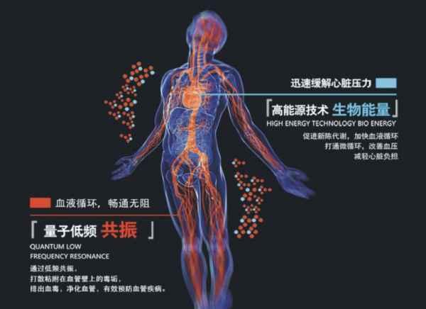 生物人体结构_首页 山东量子生物科技有限公司 打通人体微循环   > 产品规格:不限