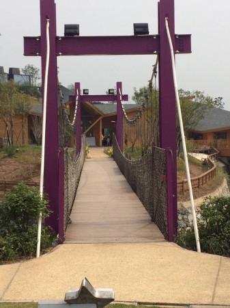 包括景点设计,仿生混凝土路面栈道,仿生栏杆,钢结构防腐木栈道,玻璃