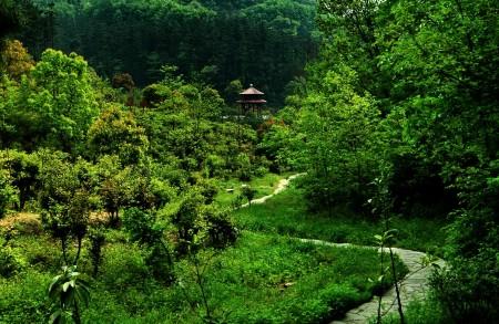 武汉周边亲子旅游