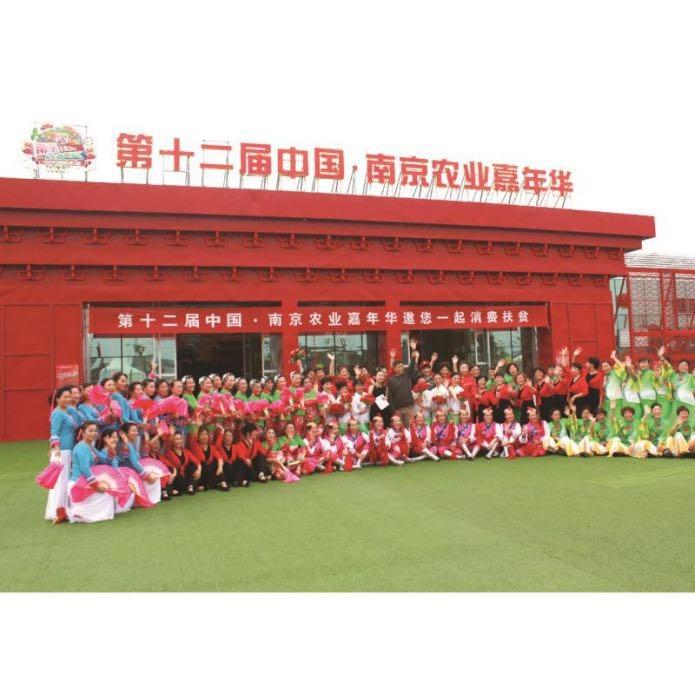 南京嘉年华项目消费扶贫