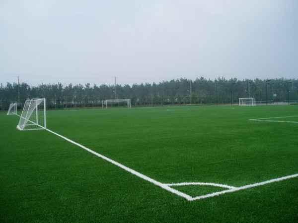 威海足球场人造草坪|足球场人造草坪报价