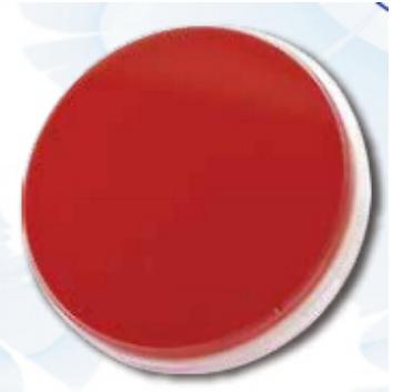 嗜血杆菌属专用马血平板