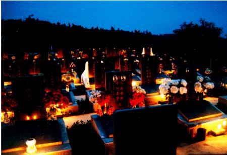 墓园墓地绿化养护服务