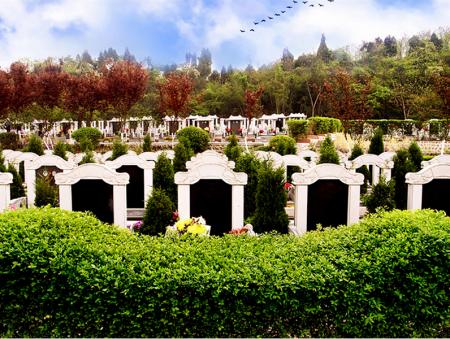 殡葬服务项目