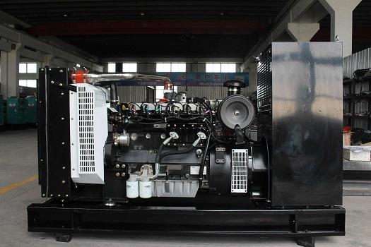 雷沃80kW沼气发电机