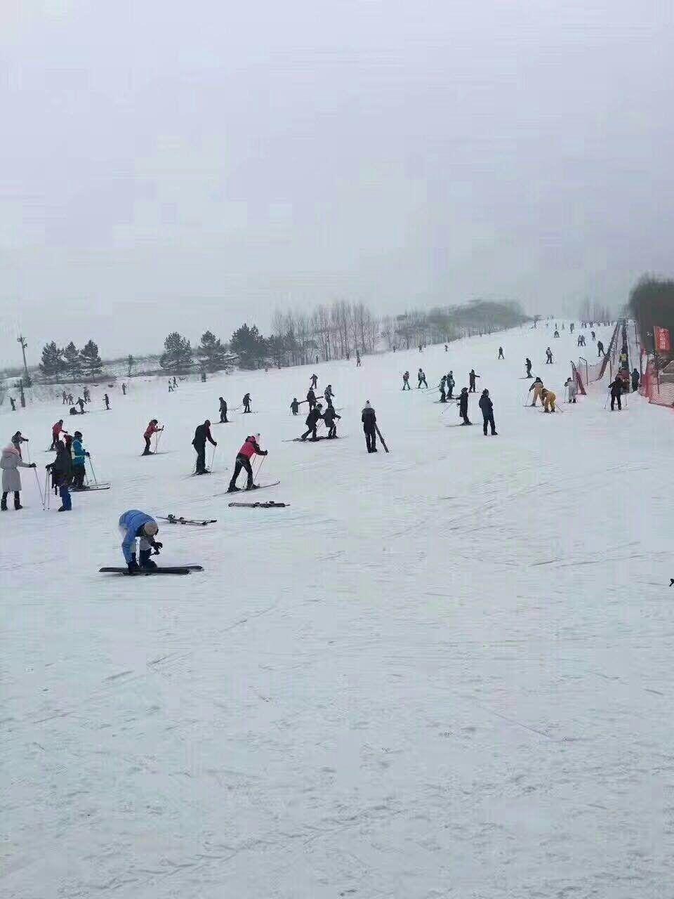 双板滑雪场地哪家好