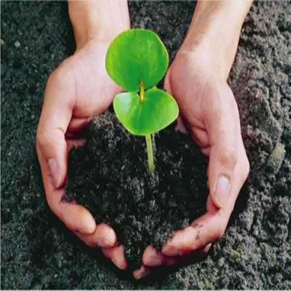 江西土壤检测和沉积物检测服务