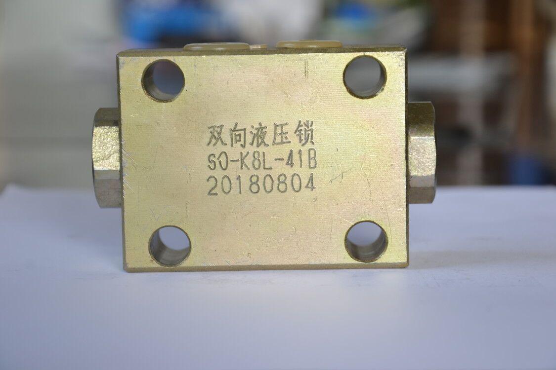 扬州双向液压锁公司