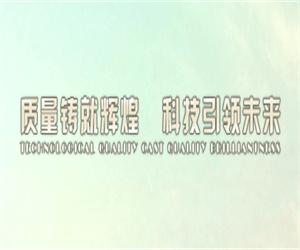广州市大新特种建筑新技术开发有限公司