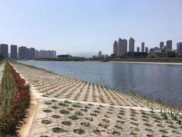 福建鑫平达六边形护坡植草砖批发价格