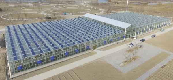 太阳能温室生产厂家