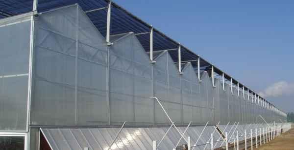阳光板温室报价