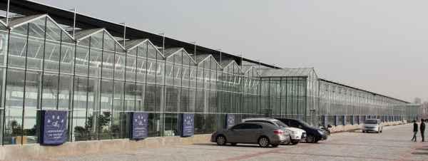 玻璃连栋温室生产厂家