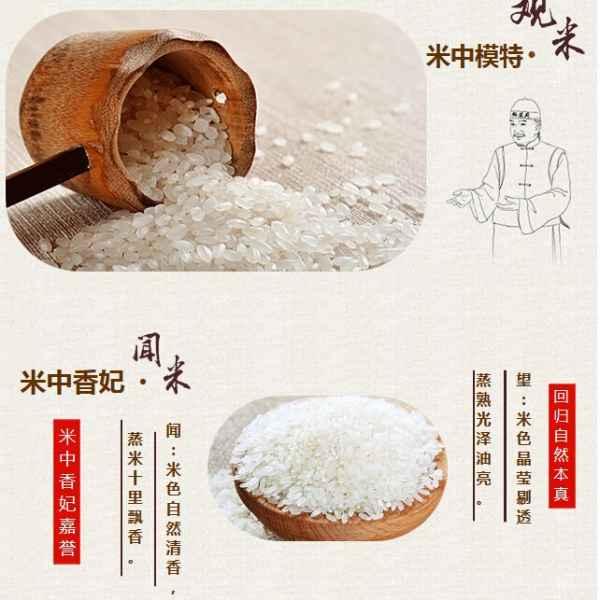 五常绿色大米供应商  