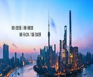 上海诚佳电子科技有限公司