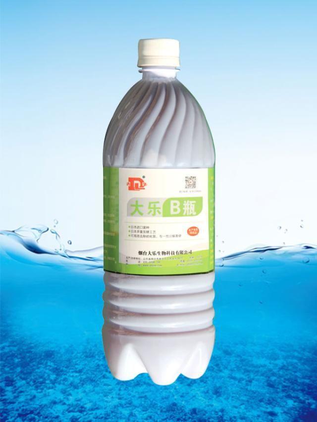 大乐B瓶厂家