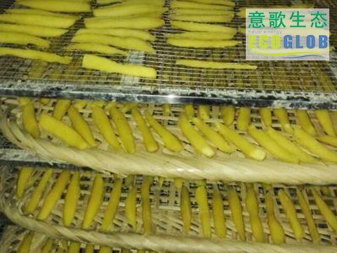 湖南红薯干烘干机厂家直销
