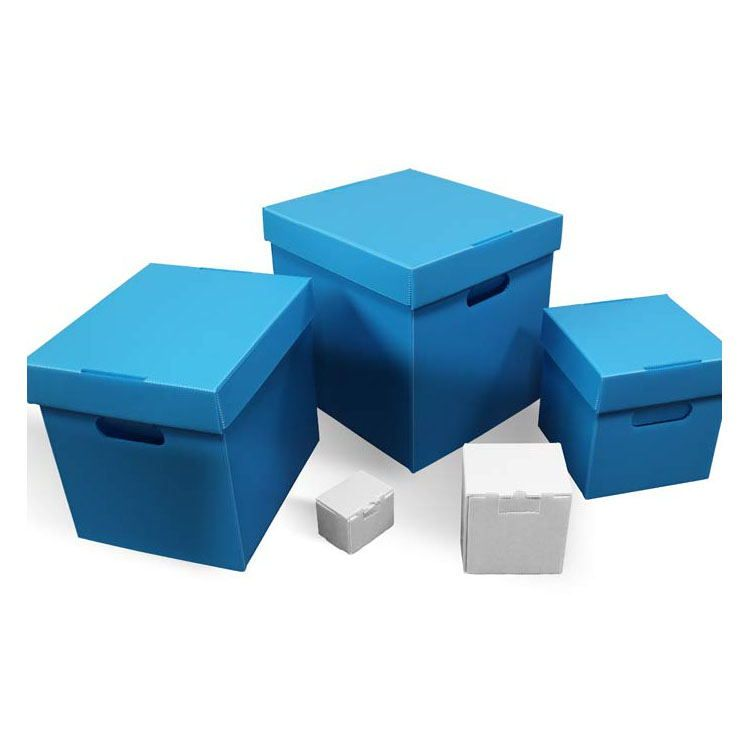广东塑料中空板包装箱供应商