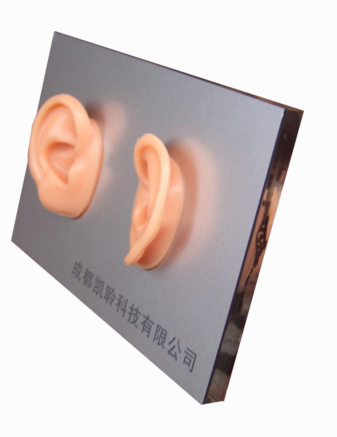 助听器配件耳朵展架哪家好