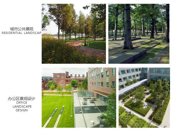 湖北办公区绿化设计如何收费