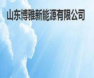 山东博雅新能源有限公司