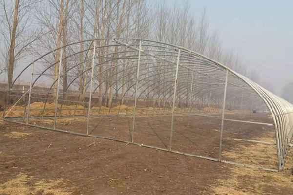 吉林农业大棚骨架建造厂家