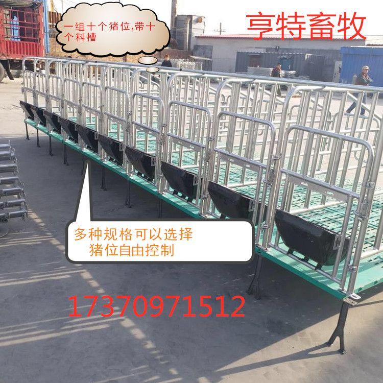 母豬定位欄單體欄熱鍍鋅結構耐腐蝕使用壽命長廠家發貨
